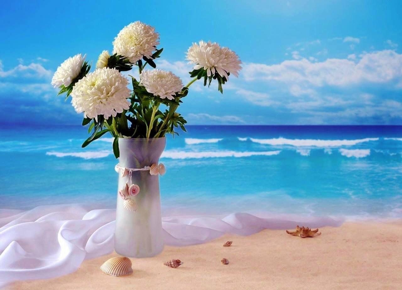 Красивые открытки цветов моря