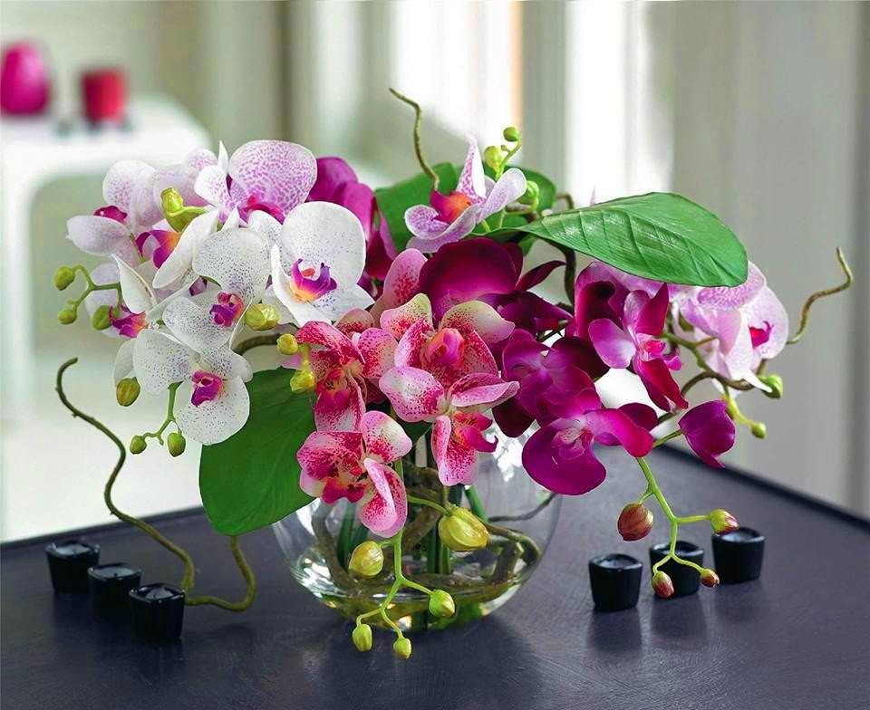 Доброе утро открытки с орхидеями